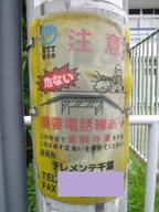 Chibayachiyo08